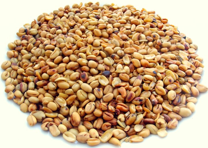 bread_fruits_ukwa-1024x733.jpg
