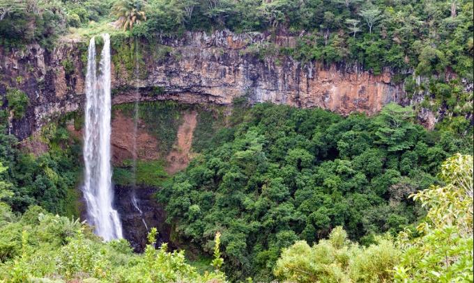 Black River Gorges National Park - Google Search.clipular.png