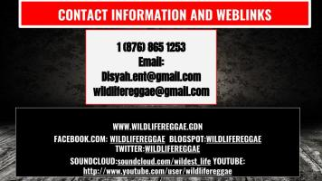 wild life short version epk (14)