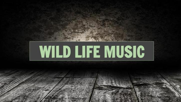 wild life short version epk (2).jpg