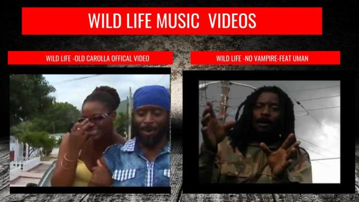 wild life short version epk (3).jpg